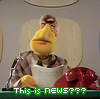 this is news muppets.jpeg